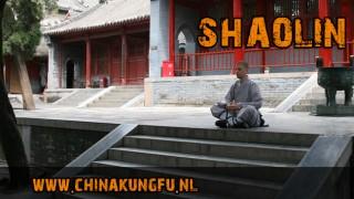 Shaolin Kungfu Brummen